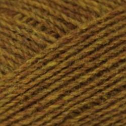 cush_shetland_autumn
