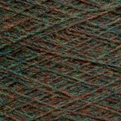 shetland_broom_15133